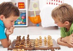 Шахматы...